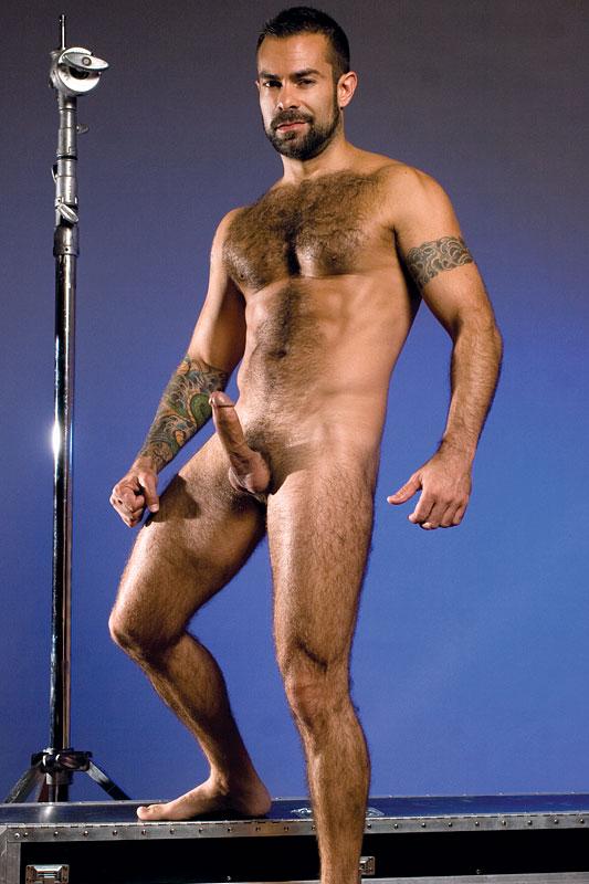 massive and erect dick