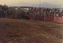 CORRIDA DE TORO EN EL ESTADIO MUNICIPAL