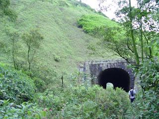 Túneis perdidos em meio à mata