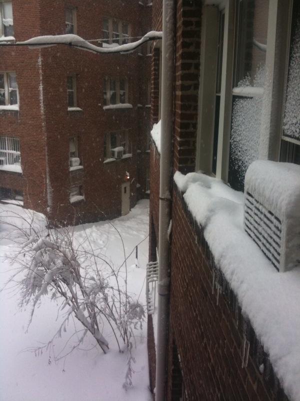 [snowwheretogo]