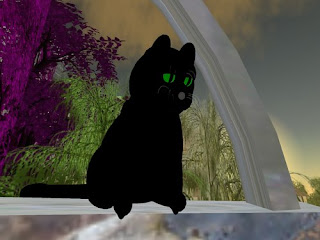 second life animals - black cat