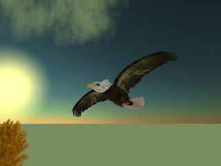 second life animals - eagle