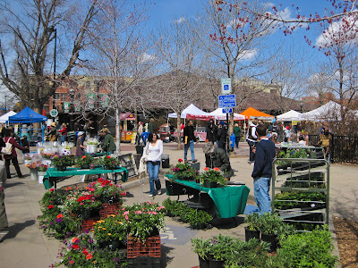 Boulder Farmer's Market