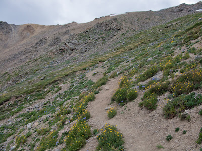 Missouri Mountain Run, Grassy Traverse