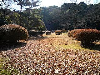 庭園風景。