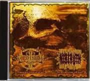 NIBIRUTH (Arg) - ALFA ERIDANO AKHERNAR (Mex)