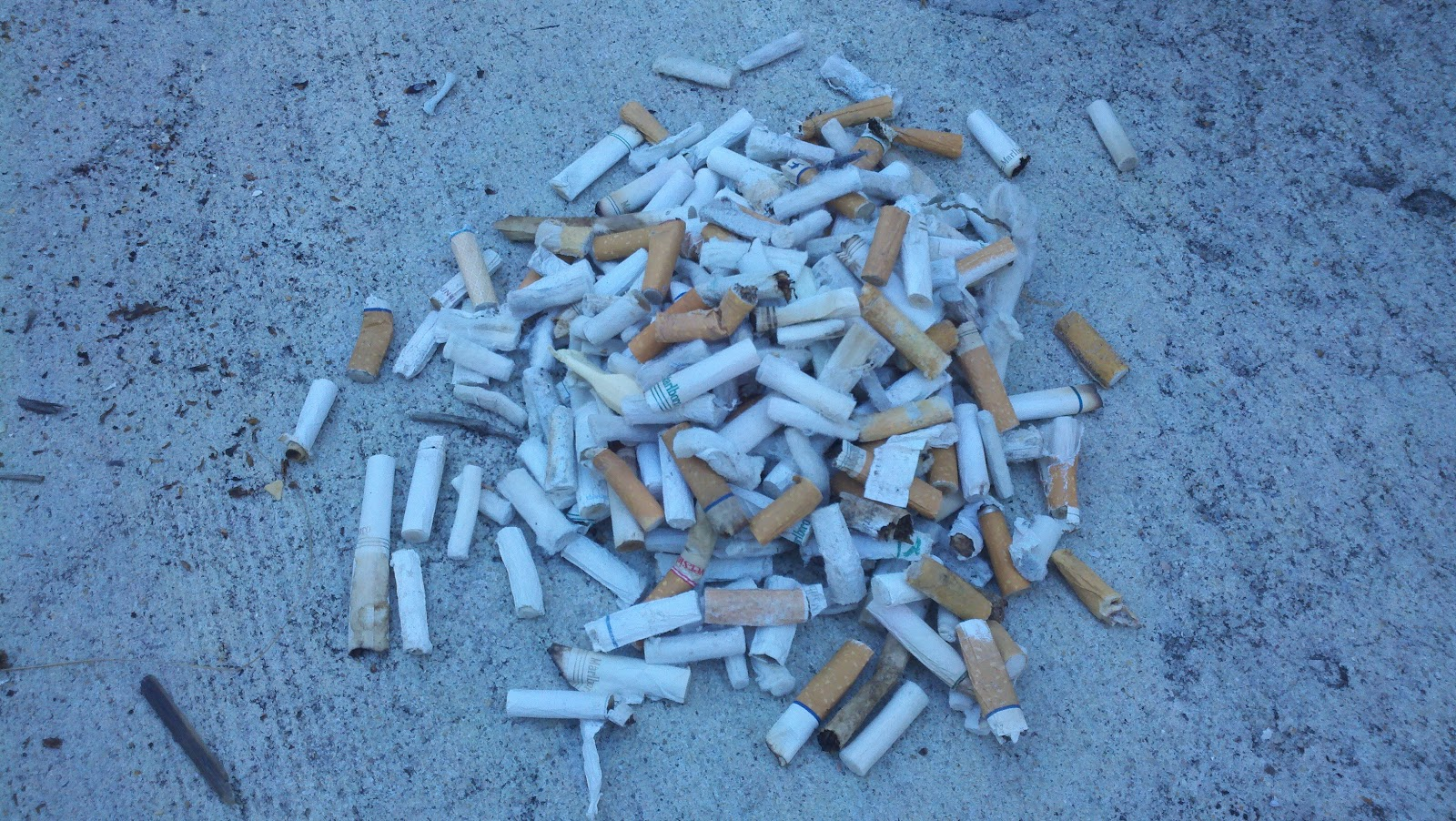 piles of cigarette butts on roads