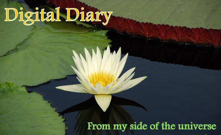 Digital-Scribble Blog