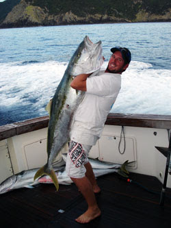 World Record Yellowtail Kingfish