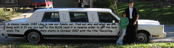 101 Uses for a Vintage LIMO