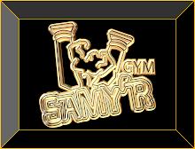 Samy'r Gym