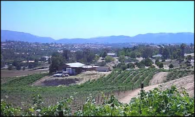 Temecular Wine District