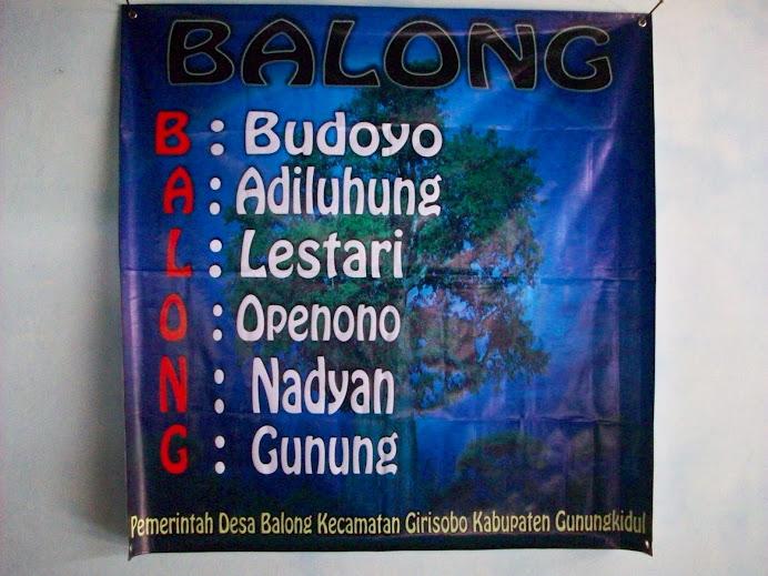 about BALONG