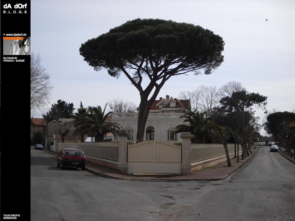 Arcachon 2009 une maison de reve avec son pin parasol for Je reve d une maison