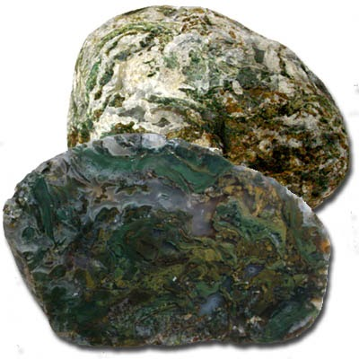 agates of the oregon coast moss agate recently found