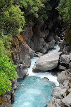 Threatened - The Waitaha's Morgan Gorge