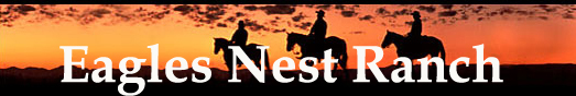 EAGLES NEST RANCH