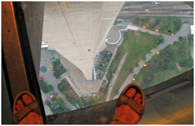 Scary view from the top of the CN Tower!