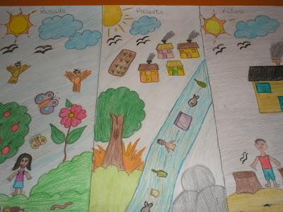 Nossa contribuição pelas causas ambientais