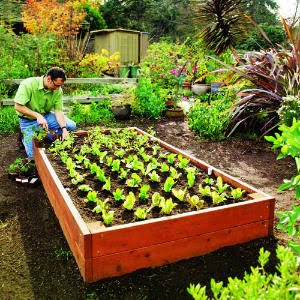 One Of My Favorite Authorities In All Things Home, Casasugar Has A Great  Map For Building Your Own Garden Box. Sunset Is Also A Good Source. Loweu0027s  Has A ...