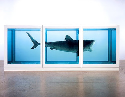 Damien Hirst shark, like Mies Farnsworth House