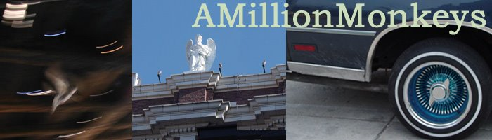 AMillionMonkeys