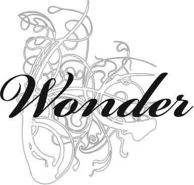 He Wonder