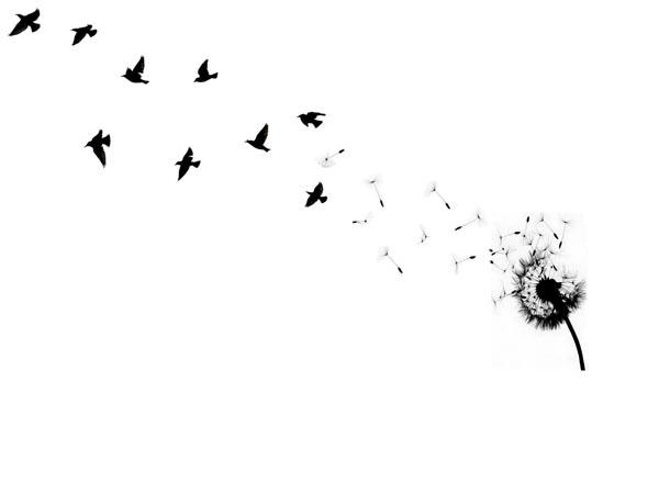 small bird tattoo. black ird tattoo.