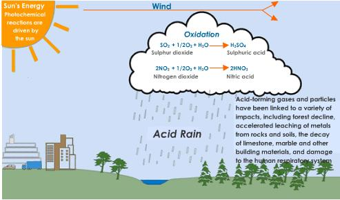 Essay on acid rain and its effects