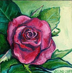 [one+rose+]