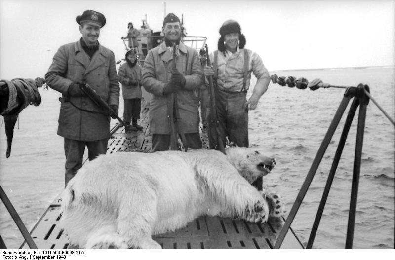 Polar+Bear.jpg