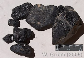 El carbon