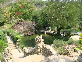 El Parque Botanico