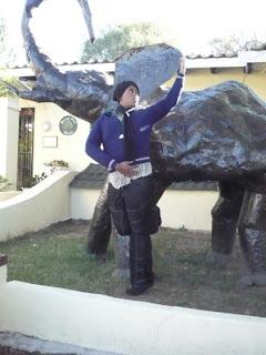 modelling, johannesburg, elephant
