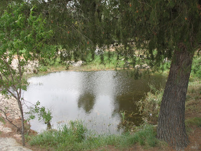 still pond jewish single women Daily jewish quotes prayer search  words for weary mothers  a still pond on one side, the watching shepherd on the other.