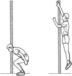 how to read vertical jump test