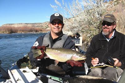 Mexico Game  Fish on Outdoors New Mexico  Report Sums Up Shape Of The San Juan River