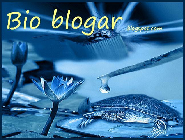 :: Biologia :: Bioblogar :: Bioblogando ::