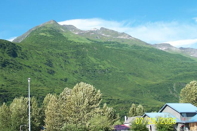 Valdez 2006