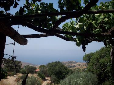 Vista dello Stretto dal Borgo di Martino