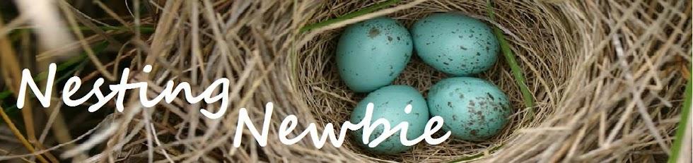 Nesting Newbie