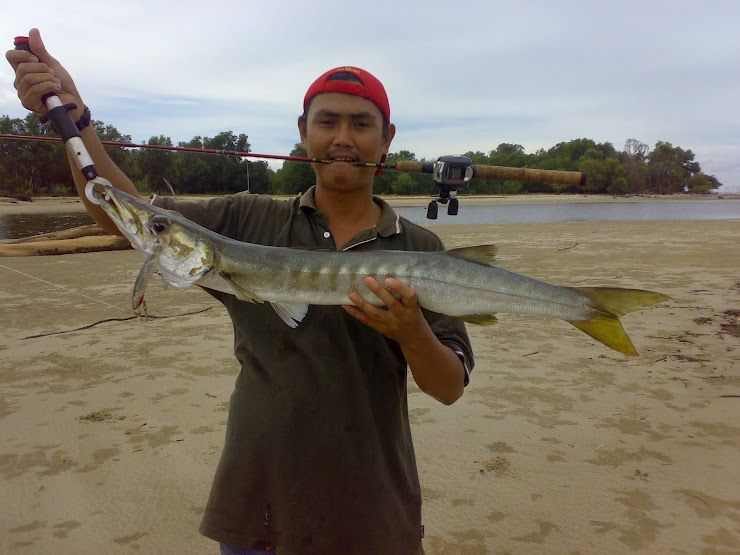 Baracuda@titir@aluan