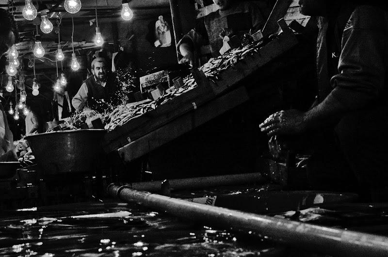estambul mercado de pescado bosforo blanco y negro