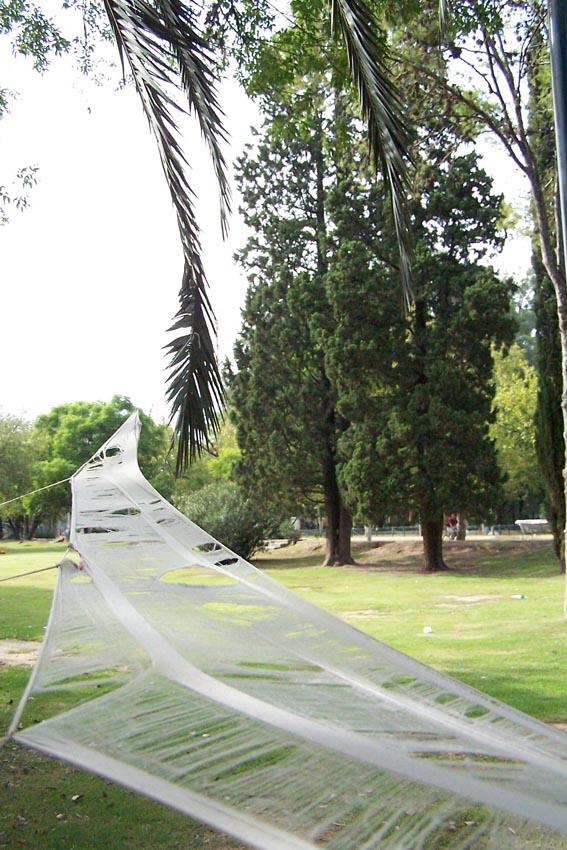 parque sarmiento.córdoba.2004