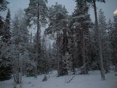 And Lapland