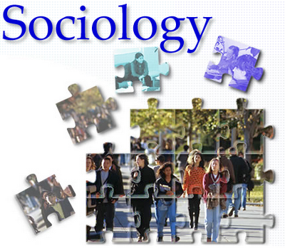 Sociology typer definition