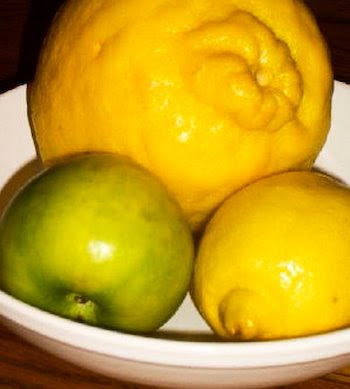 Fruits with Ponderosa Lemon