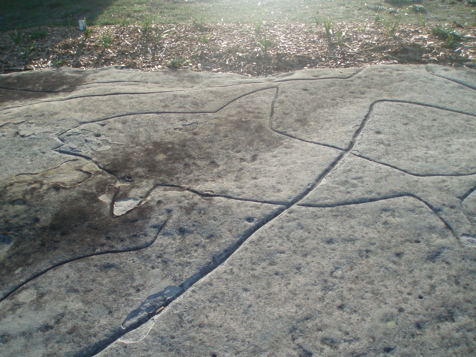 An english teacher s travel aboriginal rock carvings
