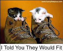 meow cute gile