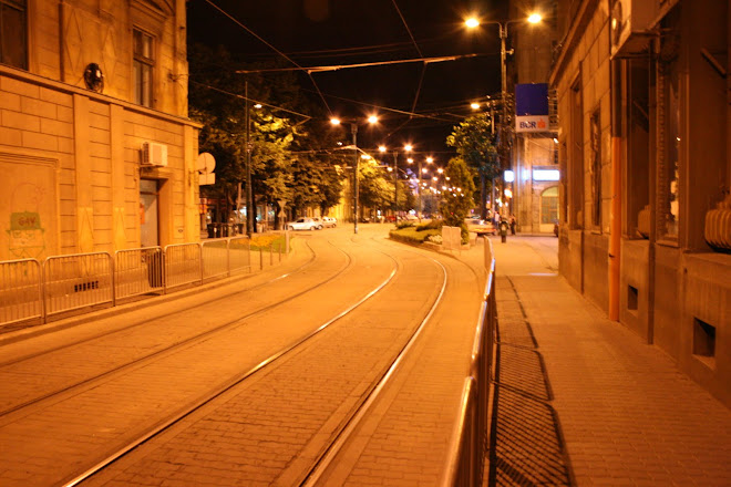 Cu tramvaiul prin Timisoara
